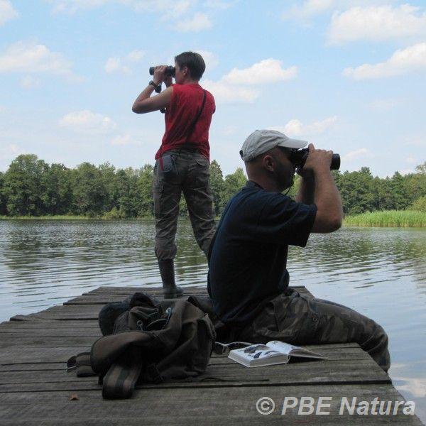 Badania ornitologiczne na Warmii (Fot. M. Strzałek)